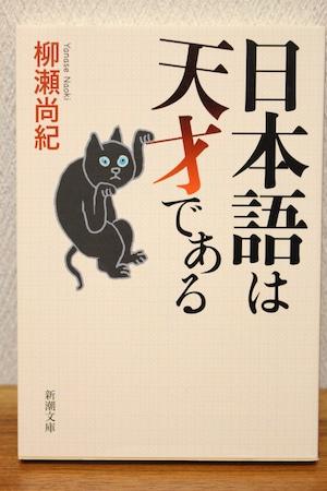 日本語は天才である 柳瀬直樹 (文庫本)