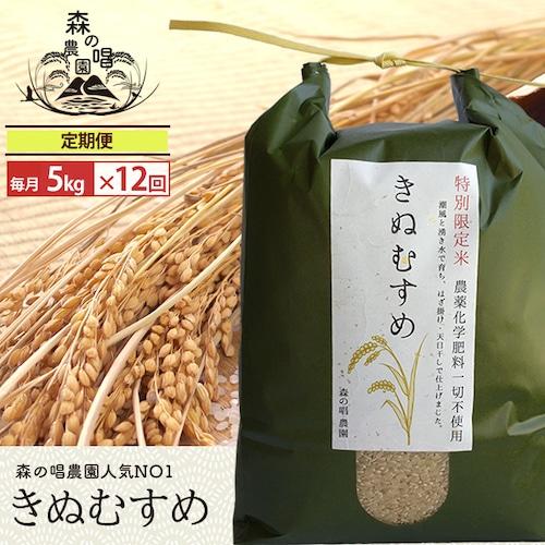 【玄米・定期便】きぬむすめ5キロ/月一回×12カ月