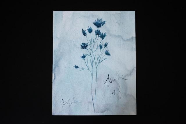 blueflower03