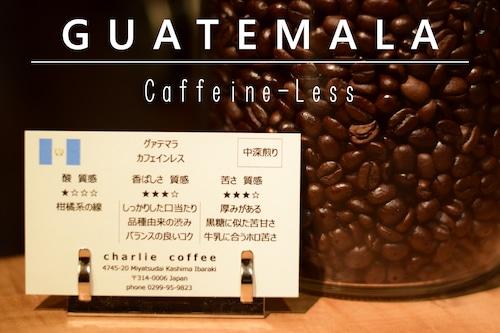 中深煎り/グァテマラ デカフェ(カフェインレス)スイスウォーター式 1kg