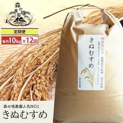 【精米・定期便】きぬむすめ10キロ/月一回×12カ月