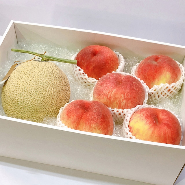 【旬の果物1種+静岡産マスクメロン】果物詰合せ8,000円セット