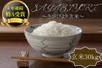 D588 【H30収穫米】みやき町産『さがびより(玄米30kg)』8年連続特A受賞