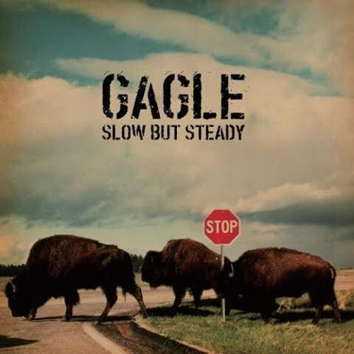 【ラスト1/LP】GAGLE - Slow But Steady