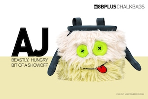 8BPLUS Chalk Bag AJ