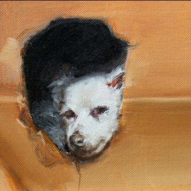絵画 絵 ピクチャー 縁起画 モダン シェアハウス アートパネル アート art 14cm×14cm 一人暮らし 送料無料 インテリア 雑貨 壁掛け 置物 おしゃれ 油絵 水彩画 鉛筆画 犬 動物 ロココロ 画家 : Uliana ( ウリャーナ ) 作品 : u-17