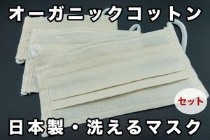 ファミリー お得な3枚セット オーガニックコットンマスク 日本製・洗える プリーツマスク きなり   3ha