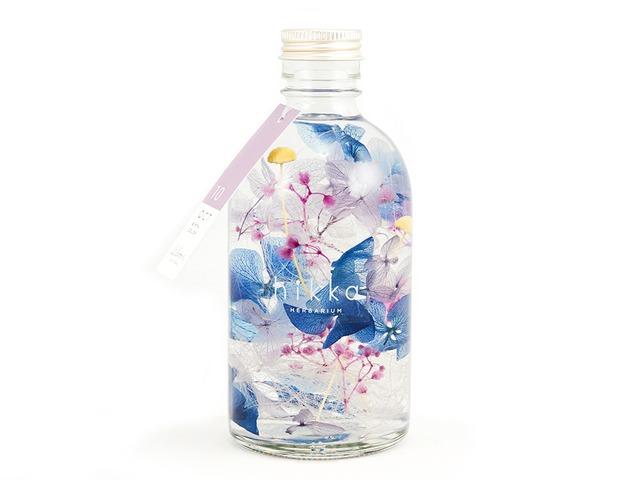 hikka ハーバリウム BIRTH COLOR 10OCT 想紫苑