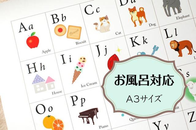 お風呂に貼れる「アルファベット表」ABC チャート 角丸 A3サイズ