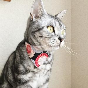【番傘柄】猫用バンダナ風首輪/選べるアジャスター 猫首輪 安全首輪 子猫から成猫