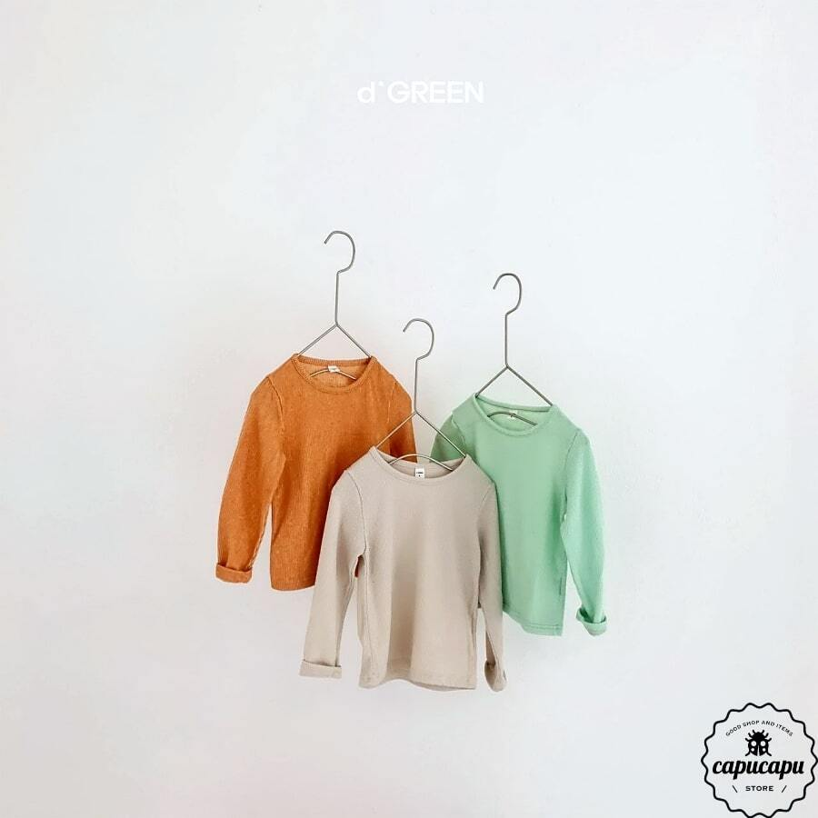 «sold out» basic cut and sew 3colors ペイズリーカットソー ロングスリーブ