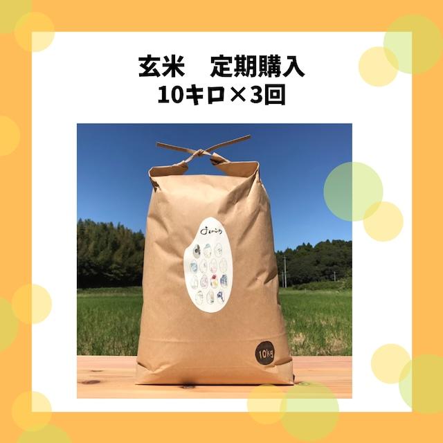 【ちょっぴりお得なお米の定期便】玄米10キロ×3回