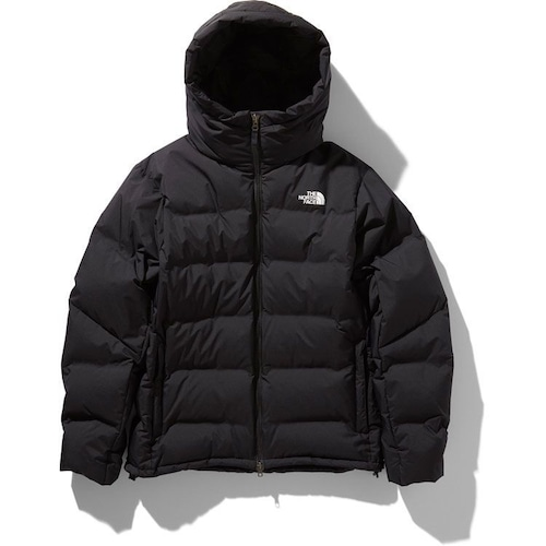 THE NORTH FACE / BELAYER PARKA(20AW)