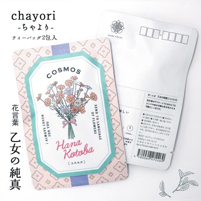 コスモス|chayori 花言葉シリーズ|和紅茶ティーバッグ2包入|お茶入りポストカード