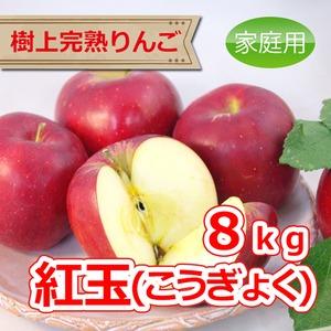紅玉 8kg