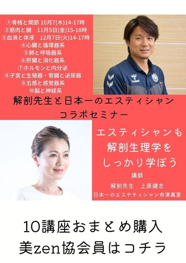 【協会】解剖学セミナーおまとめ購入