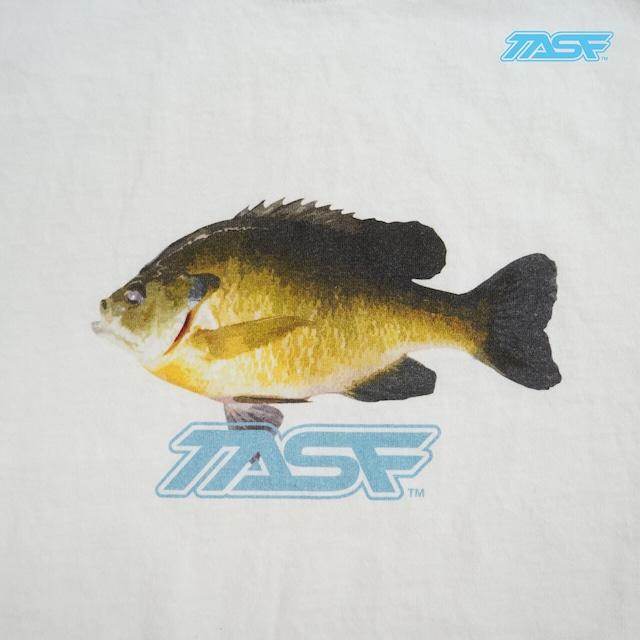 TASF  /   GILL Tee  /  WH