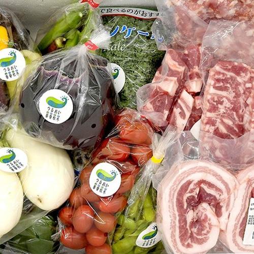 四元豚 お肉と季節の野菜の満足セット