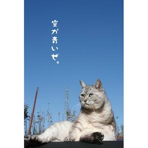 しまさんポストカード「空が青いぜ」