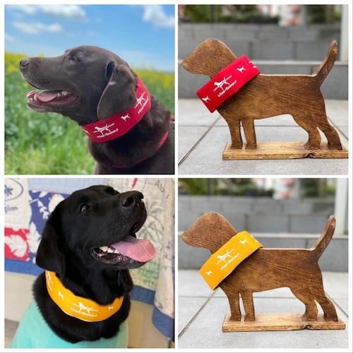 【L】ネッククーラー(Dog + Rescue × Labrador Retriever)【大型犬】