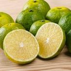 幻の柑橘・へべすライム x 1kg【定期購入】