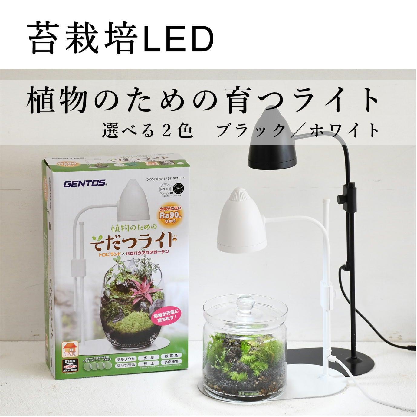 【苔テラリウム栽培用】 植物のためのそだつライト ブラック/ホワイト/シルバー