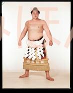 昭和38年3月場所優勝 横綱 大鵬幸喜関(10回目の優勝)