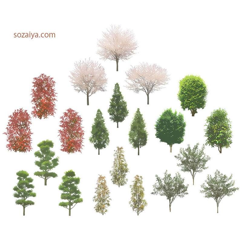 樹木イラストSketchUp 4b_004 - 画像2