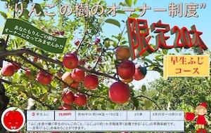 「りんごの樹」オーナー制度募集中!【早生ふじ・コース】【青森県】