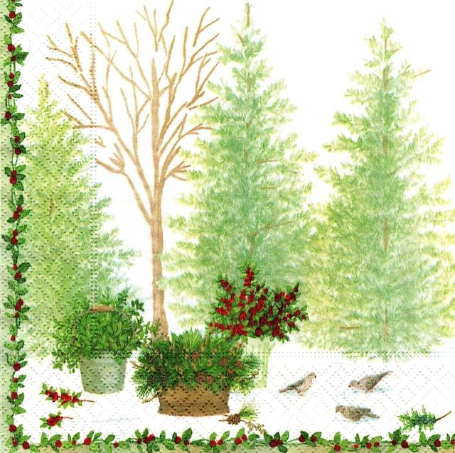 2021秋冬【Caspari】バラ売り1枚 ランチサイズ ペーパーナプキン Winter Conservatory グリーン
