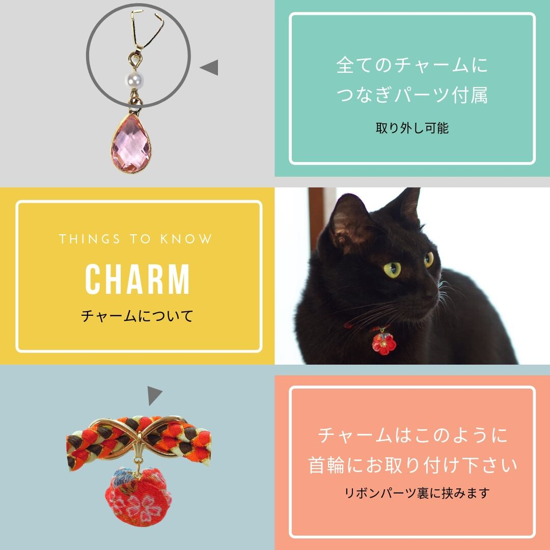 【チャーム】トランプ