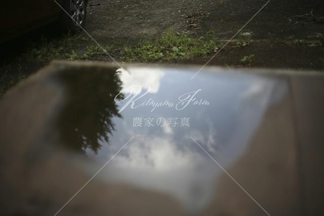 319 雨上がりの夏空リフレクション