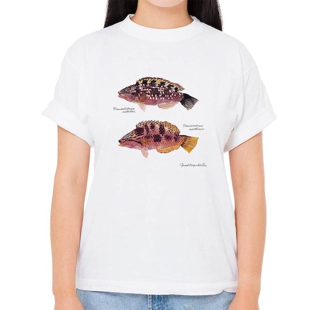 【アカササノハベラ・ホシササノハベラ】長嶋祐成コレクション 魚の譜Tシャツ(高解像・昇華プリント)