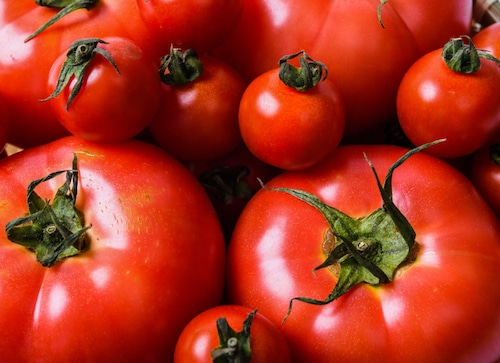 【出荷目安7月上旬〜】大玉トマト3kgセット