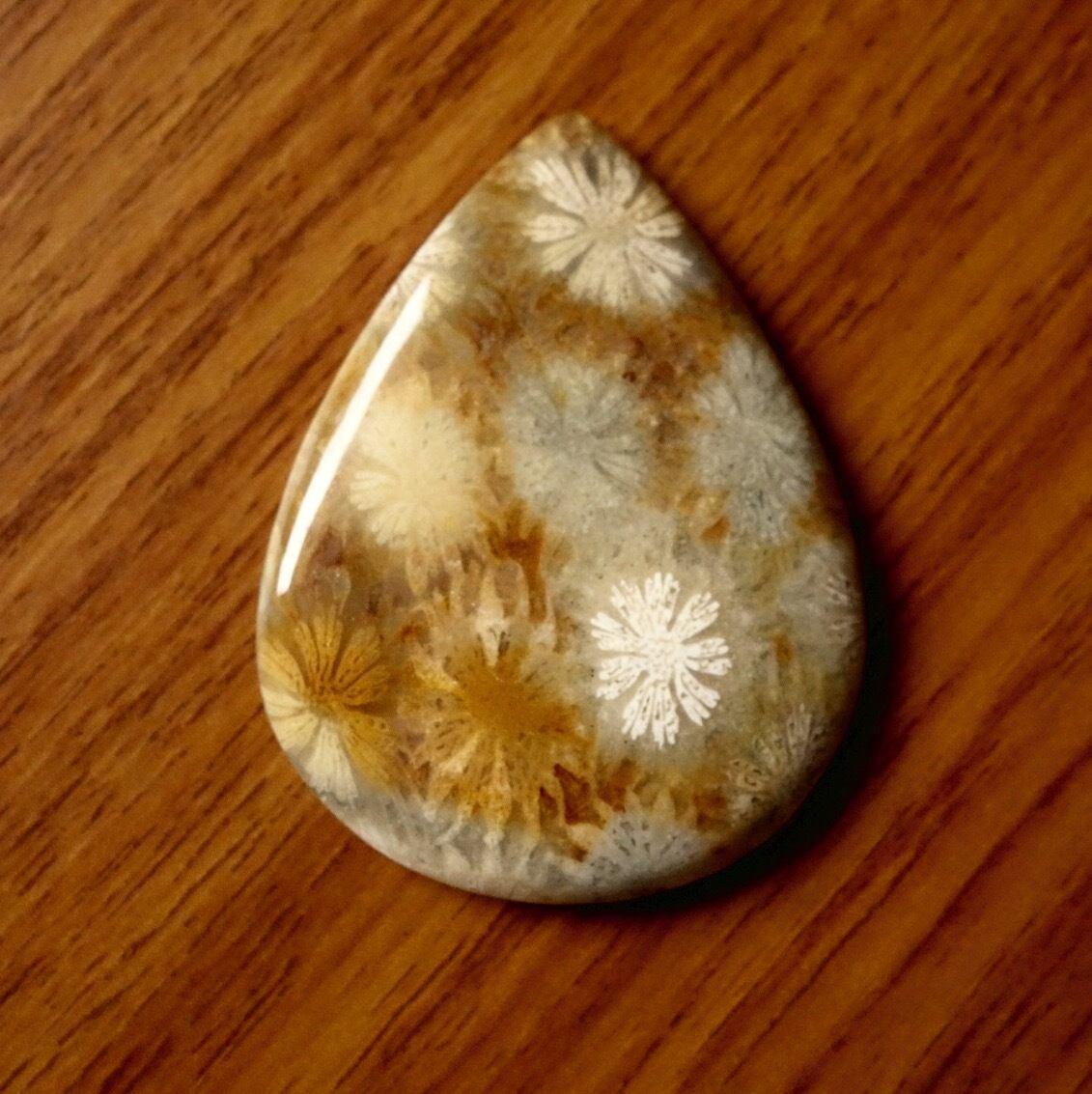 フォッシルコーラル 天然石ルース