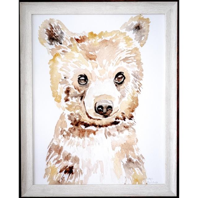 Dear Baby Bear