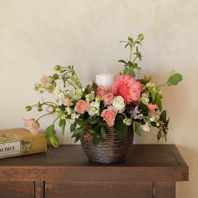 Sympathy Flower コチョウラン