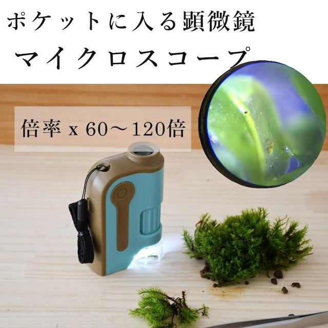 【コケ観察用】マイクロスコープ(倍率60〜120倍)