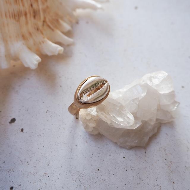 Shell Brass Ring《GLD》19385149【14号】