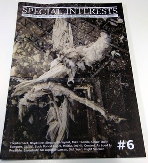 [USED] SPECIAL INTERESTS #6 (2011) [ZINE]
