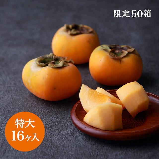 本場松ヶ岡産 庄内柿(特大 16ヶ入)