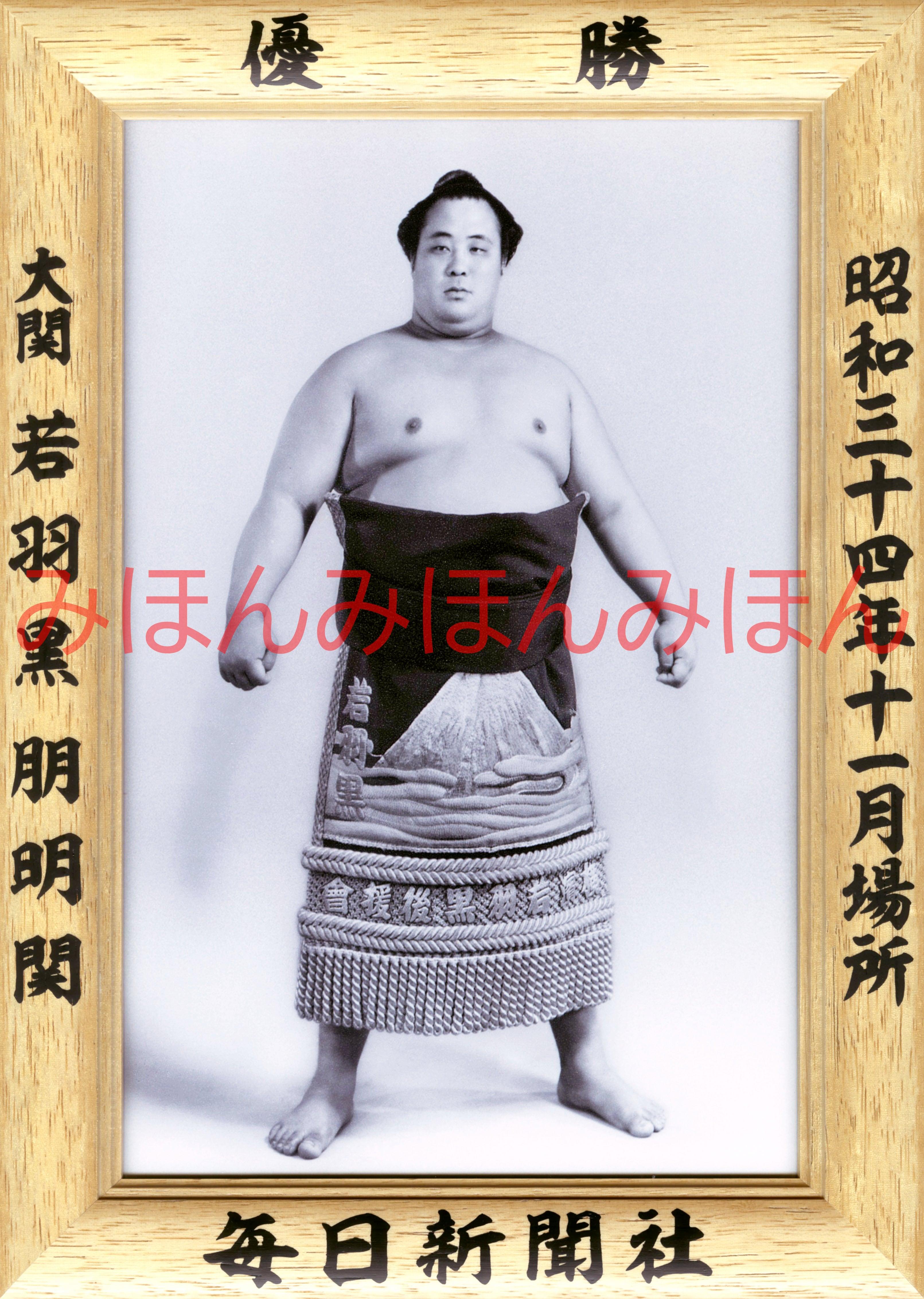 昭和34年11月場所優勝 大関 若羽黒朋明関