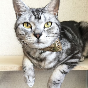 【トラサファリ柄】猫用バンダナ風首輪/選べるアジャスター 猫首輪 安全首輪 子猫から成猫