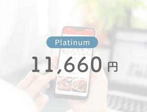 Platinum ランク/【URLの納品について】を購入前にご確認ください