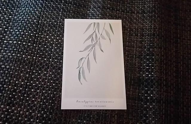 植物 ポストカード Y