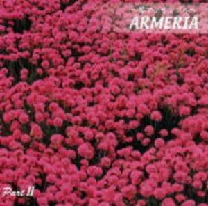 ARMERIA-2 アルメリア パート2(アルメリア/CD)