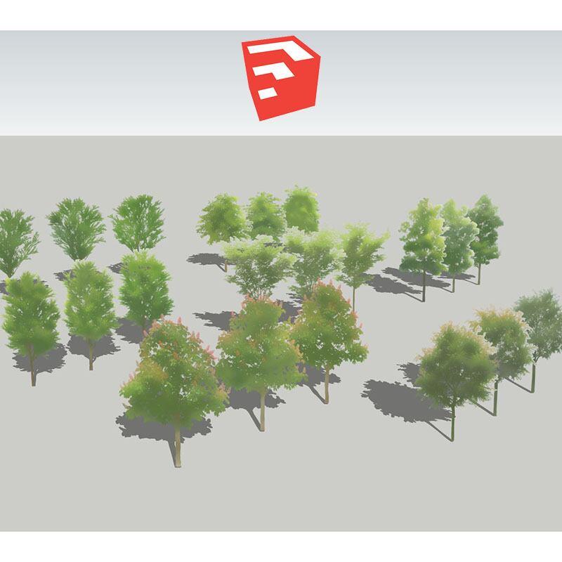 樹木イラストSketchUp 4b_002 - 画像1