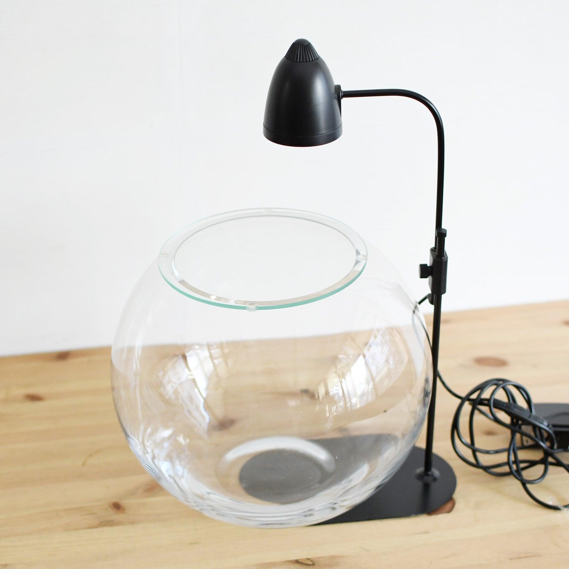 【ガラス容器】ラージボール・L ふた付き(250xh210mm)◆LEDライトset