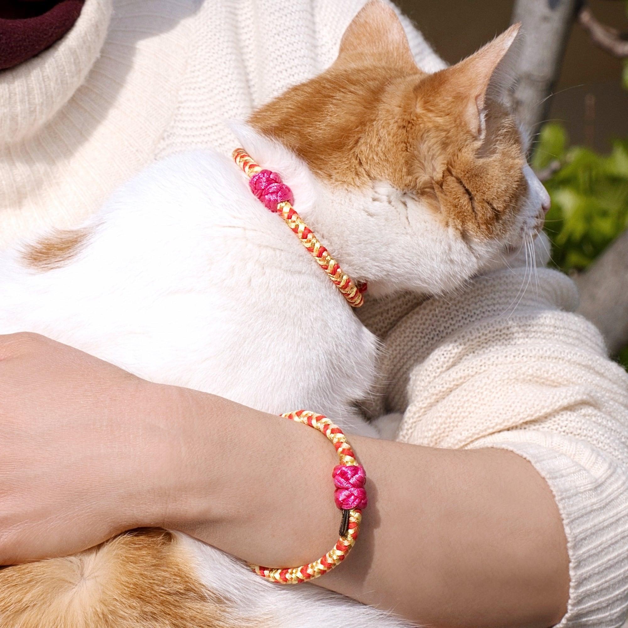 【ペア】Pink Lady 組紐ブレスレット&猫首輪 ペアセット
