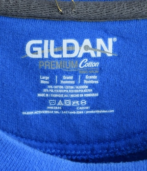 USED GILDAN SWEAT -DELASALLE-